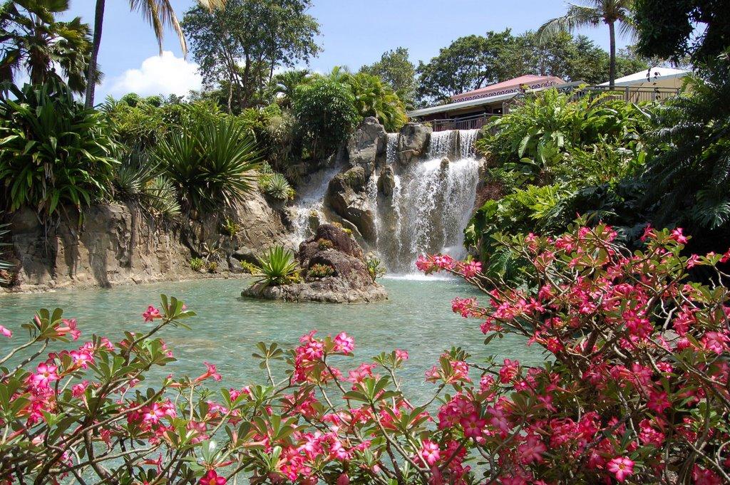 cascade-jardin-botanique-deshaies-bungalows-gites-guadeloupe